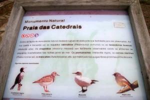 as catedrais