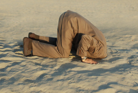 esconder la cabeza,transparencia, pobreza,servicios sociales, corrupción